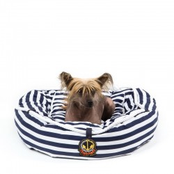 INFLATABLE DOGBED