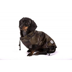 CAMUWINDJACKET BULLDOG