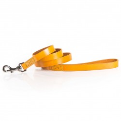 WINTER COLOR LEASH