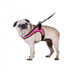 SAINT TROPEZ HARNESS