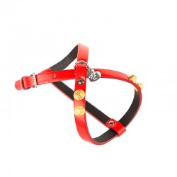 MAGIC EMOTION HARNESS